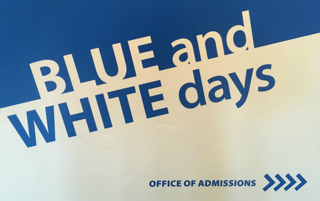 Blue And White Days