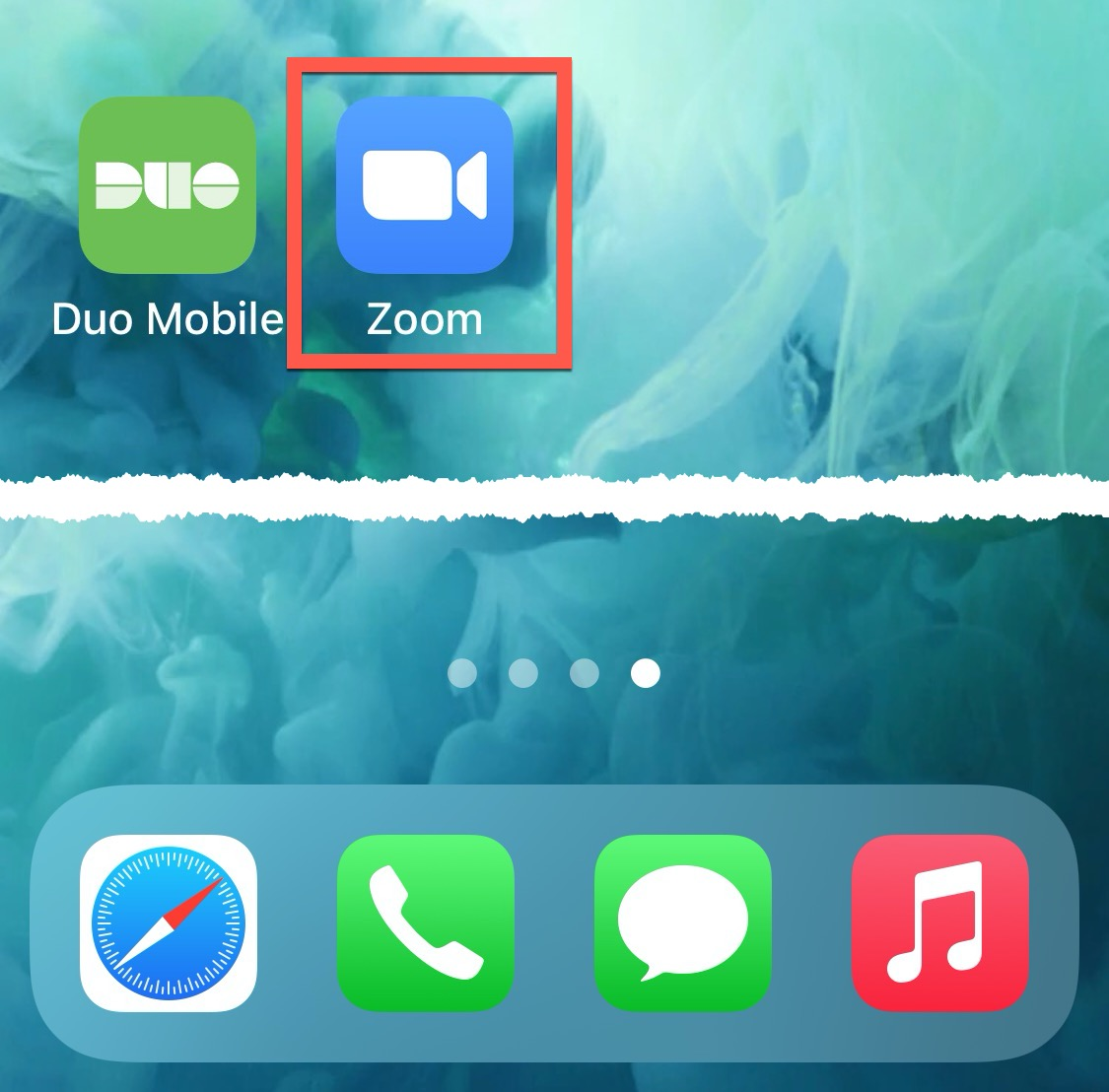Zoom Smart Device Access Home Screen