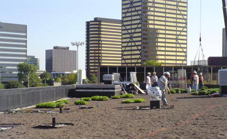 Students on Greenroof of Taubman Student Services Center